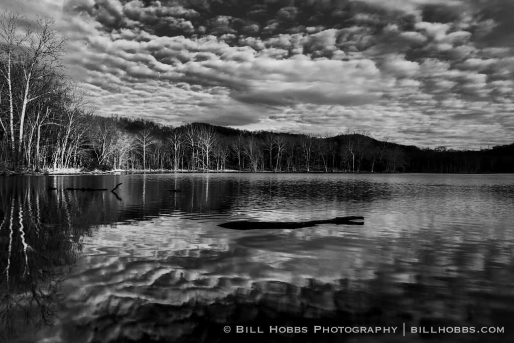 reflections-radnor-lake