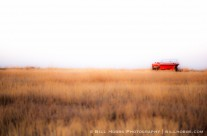 Red Boat on The Plains
