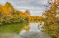 Fall at Radnor Lake